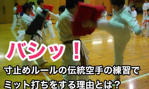 寸止めルールの伝統空手の練習でミット打ちをする理由とは?