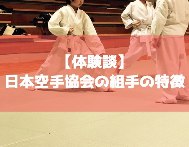 【体験談】日本空手協会の組手は何が違う?間合いや特徴は?